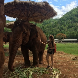 young woman pets an elephant