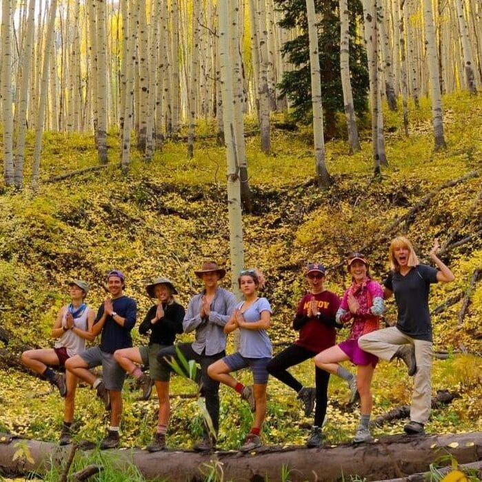 A group of young people do yoga, the tree pose, while standing in an aspen grove in the wilderness.
