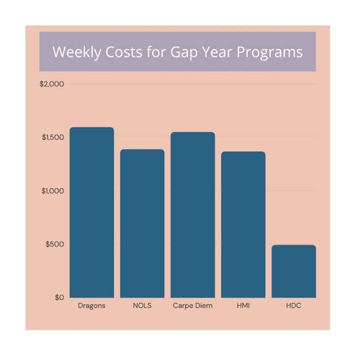 A bar graph comparing popular gap year program's prices, showing HDC is the most affordable