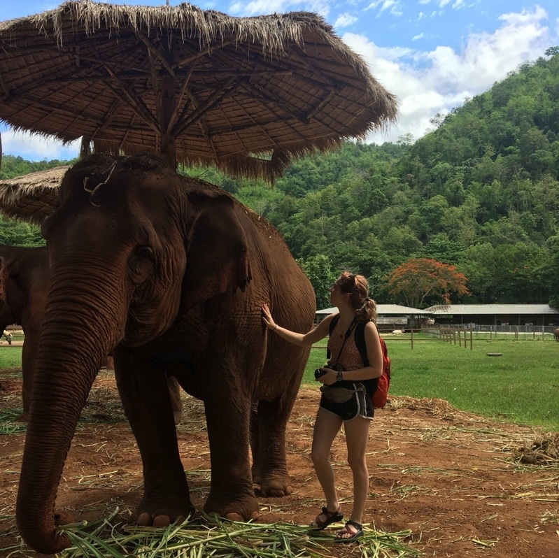 young woman pets elephant at conservation center